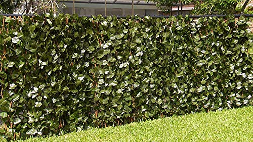 Verseo Faux Ivy Greenery Yard Decoration, Ivy Hedge Privacy Screen, Expandable 2-Pack (Vinyl Fence Slats)