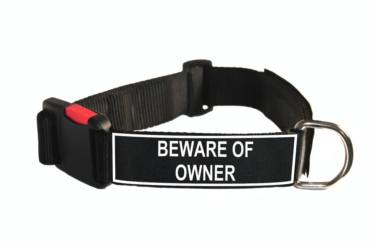 Dean & Tyler Nylon Patch Dog Collar with Beware of Owner Patches, Large, Fits Neck 26 to 37-Inch