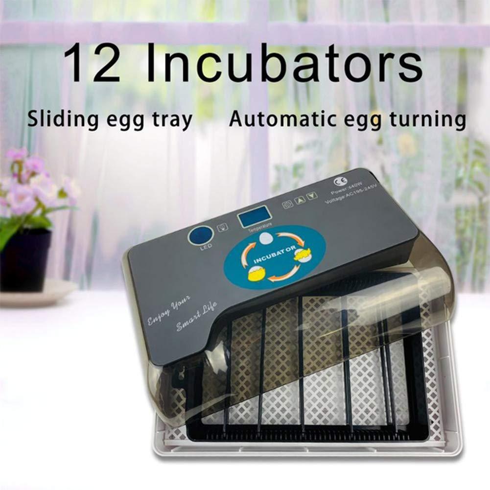 risposte rapide LanLan incubatori Mini incubatrici domestiche per Uova di di di Pollo di quaglia e Anatra  garanzia di credito