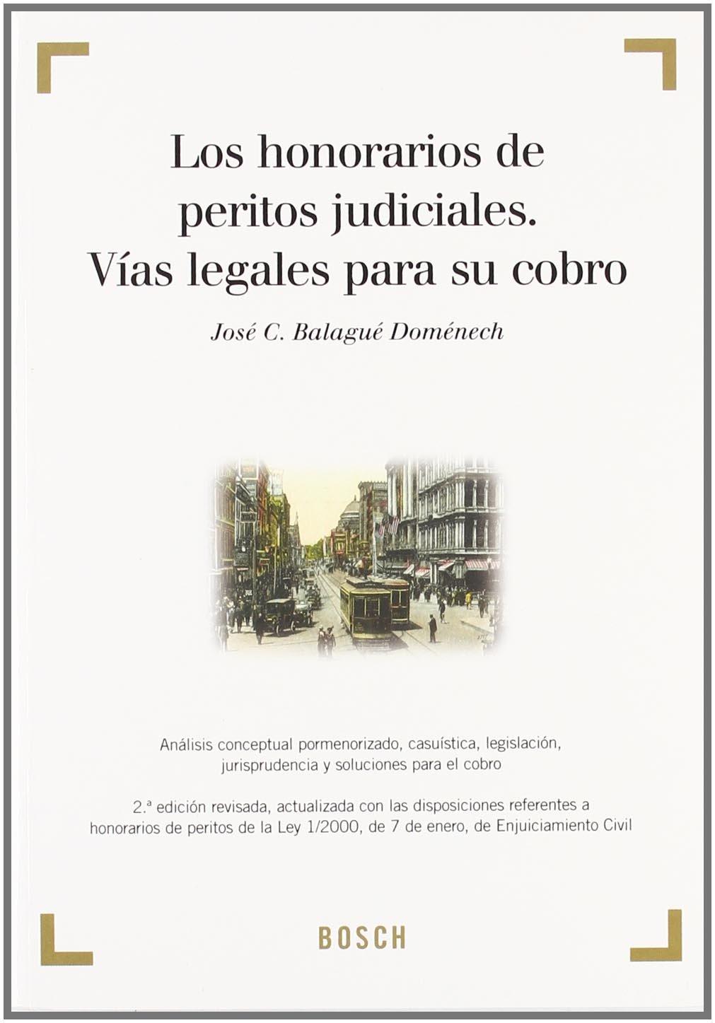 Los honorarios de peritos judiciales. Vías legales para su cobro: Análisis  conceptual pormenorizado, casuística, legislación, jurisprudencia y  soluciones ...