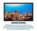 Oceans: Nature's Aquarium DVD [nature video for relaxation, ambiance, and education]