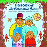 img - for Big Book of the Berenstain Bears book / textbook / text book
