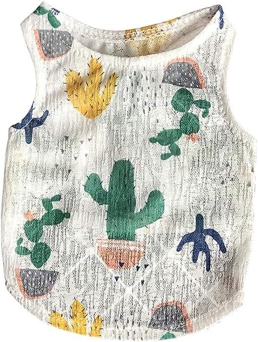 POPETPOP Ropa para Perro Camisa para Perros de Cactus Ropa de Verano para Perros Pequeños: Amazon.es: Productos para mascotas