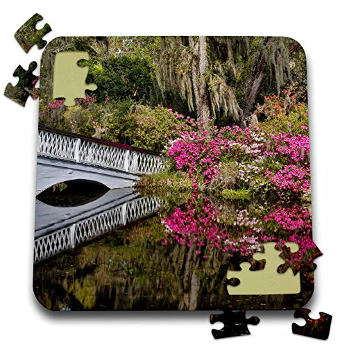 Cypress Garden Bridge - Danita Delimont - Gardens - Bridge crossing garden pond, Charleston, South Carolina. - 10x10 Inch Puzzle (pzl_279411_2)