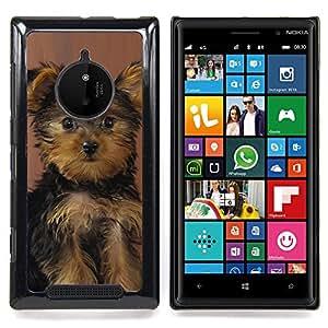 Ihec Tech Perrito de Yorkshire Terrier Perro Sorprendido / Funda Case back Cover guard / for Nokia Lumia 830
