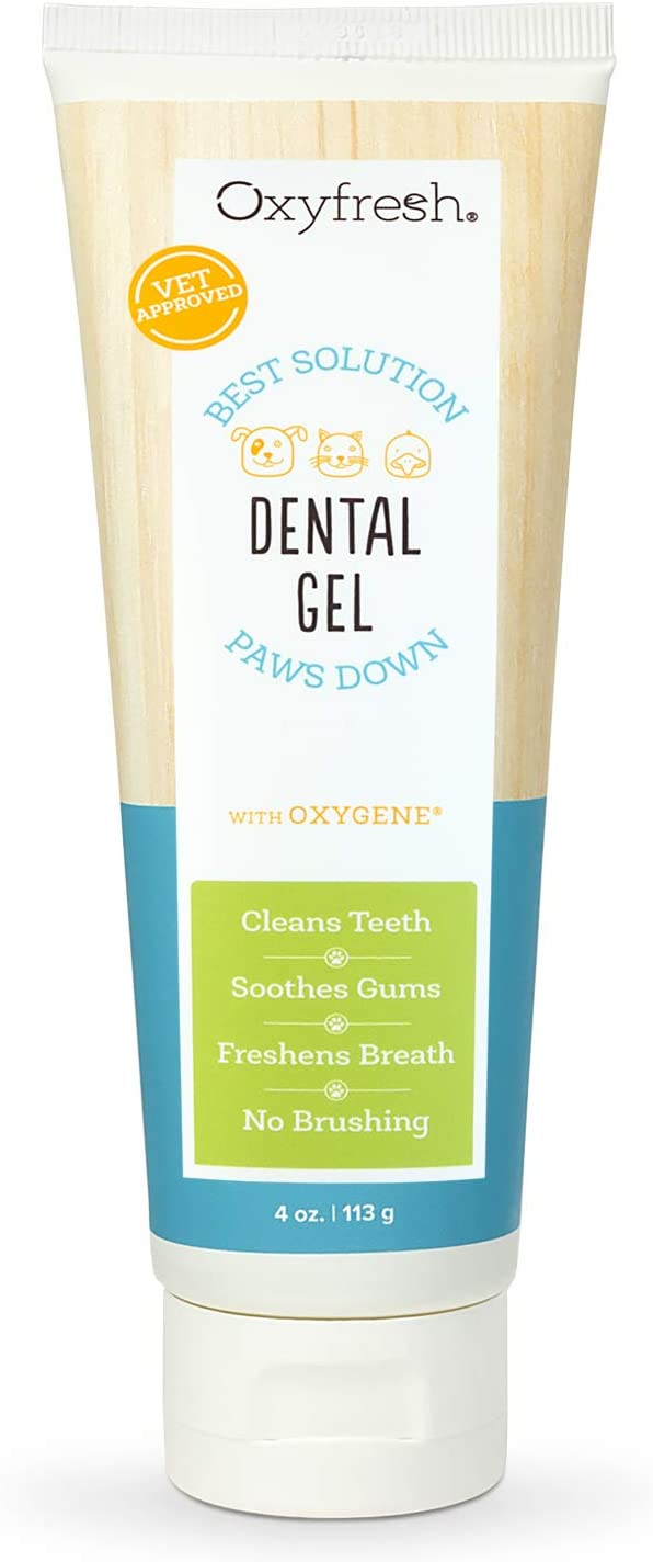 oxyfresh dental gel