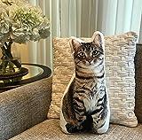 """Cushion Co -Tabby Cat Pillow 16"""" x 12"""""""