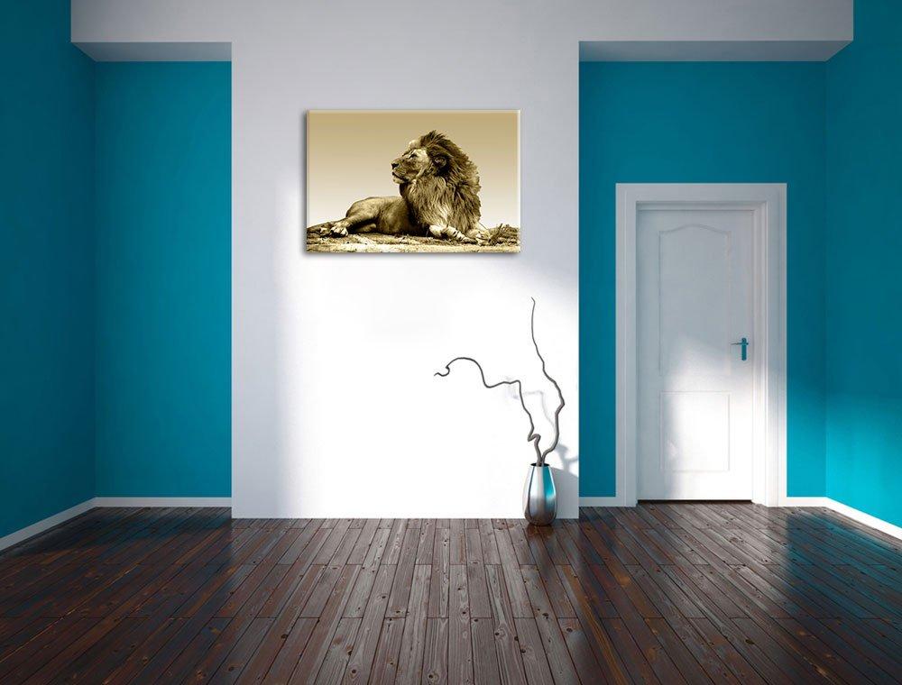 liegender l we bild bild bild auf leinwand xxl riesige. Black Bedroom Furniture Sets. Home Design Ideas