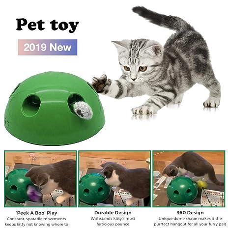 2019 nuevos juguetes interactivos para gatos: juguete teaser ...
