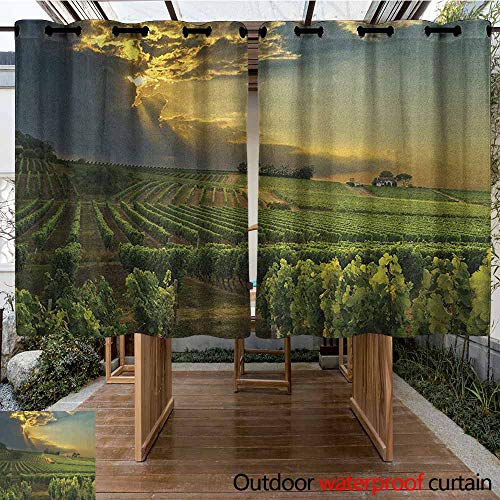AndyTours Sliding Door Curtain,Winery,Sunset Over The Vineyards of The South of France Sunbeams Cloudscape Picture,for Porch&Beach&Patio,K140C183 Green Yellow Gray