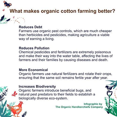 "Organic Handkerchiefs Womens Cotton Set - 8"" small white hankies 3 pk Made in US by The Organic Handkerchiefs Company (Image #5)"