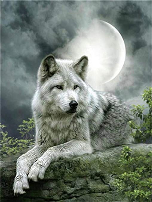 Beauty and Wolf Drawing with Brushes Christmas Decor Decorations Gifts DIY Oil Painting Paint by Number Kit for Kids Adults Beginner 16x20 inch Frame