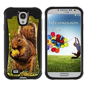Exotic-Star Hybrid Heavy Duty Shockproof Ballistic Fundas Cover Cubre Case para Samsung Galaxy S4 IV (I9500 / I9505 / I9505G) / SGH-i337 ( Ardilla de Brown & Nut )