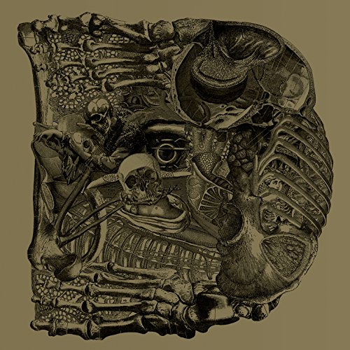 Boris - Dear - CD - FLAC - 2017 - FORSAKEN Download
