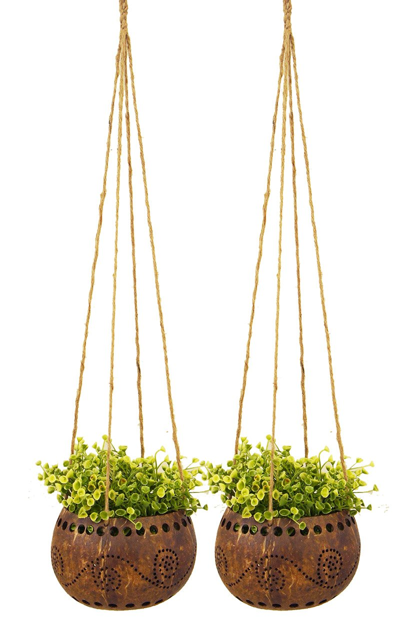 Exotic Elegance Set of 2 Garden Decorative 4 1 2 Coconut Shell Hanging Planter Pot Size M .