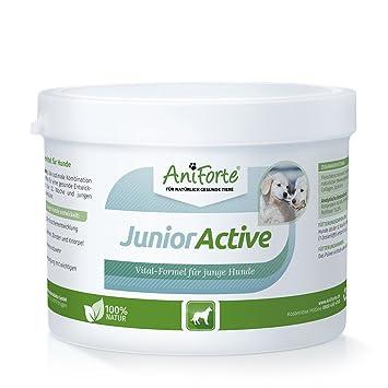 AniForte Junior Activos 250G específicamente para Cachorros y Perros jóvenes, Perro de Perrito Suplementos con vitaminas minerales Muchas El Revestimiento ...