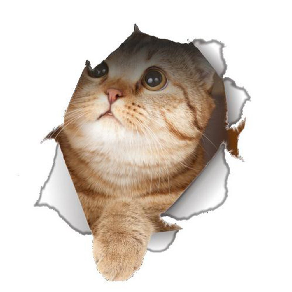 Dosige Gato Mascota 3D Pegatinas de Ventana Pared Extra/íble Pegatinas Vinilo Decal Murales Para Cocina Sala de estar Dormitorio Restaurante