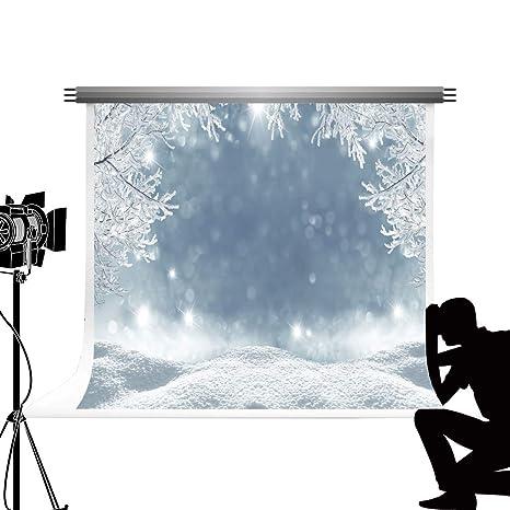 181ee52be Kate Winter Snow Branch Studio Telón de Fondo Bokeh Forest Photo Background  Copo de Nieve Telón