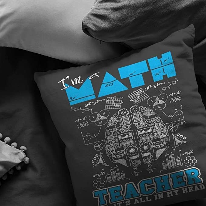 Amazon.com: ODDITEES Funny Math Teacher Pillows Im a Math ...