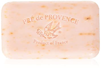 caa5c91d7b5e5 Amazon.com  Pre de Provence Artisanal French Soap Bar Enriched with ...
