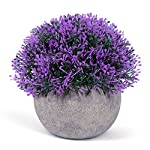 Vangold Lifelike Artificial Plants Plastic Grass Plants with Pots for Home/Office Decor