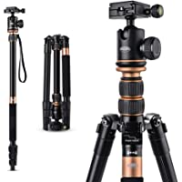 """Rangers Alumin 56"""" Ultra Compact and Lightweight Aluminum Tripod with 360° Panorama Ball Head, Ideal for Travel and Work"""
