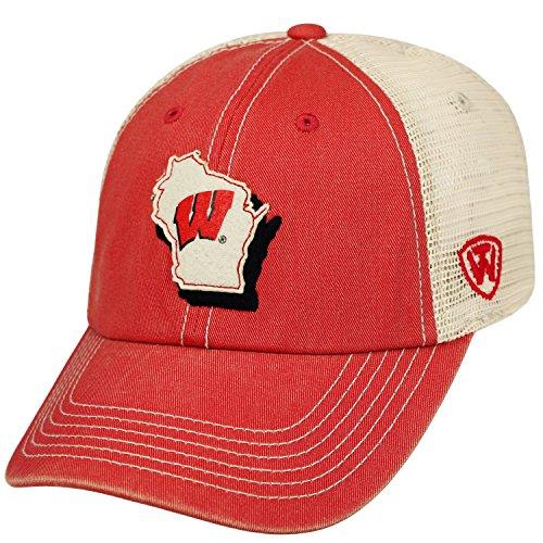 NCAA Wisconsin Badgers Adult Unisex United Adjustable (Badger Hat)