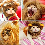 Dadiii Cat Lion Mane, Lion Mane Wig for Cat Little Dog, Adorkable Pet Hat Costume with Ears for Halloween Christmas Cosplay Party (Brown & Yellow)