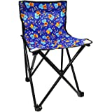 Portable Folding Camping Chair (Blue)