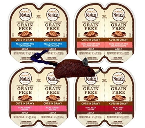 Nutro Perfect Portions Grain Free Cuts In Gravy Cat Food 4 Flavor 8 Can Variety with Toy Bundle, (2) each: Real Catfish Tuna,Real Chicken Salmon, Real Turkey, Real Beef - 2.6 Ounces (8 Cans Total)
