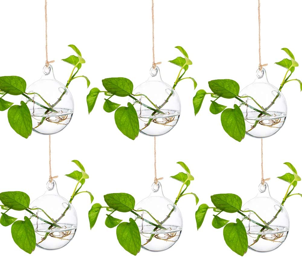 Glass Large Hanging Planters Water Air Plant Succulent Containers Terrarium Candle Holder Indoor Outdoor 2 Holes 6Pcs with Strings Rope for Home Garden Balcony, Sphere Shape