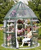 Flower House FHCV900 Conservatory Greenhouse, Clear For Sale