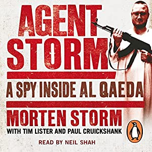 Agent Storm Hörbuch