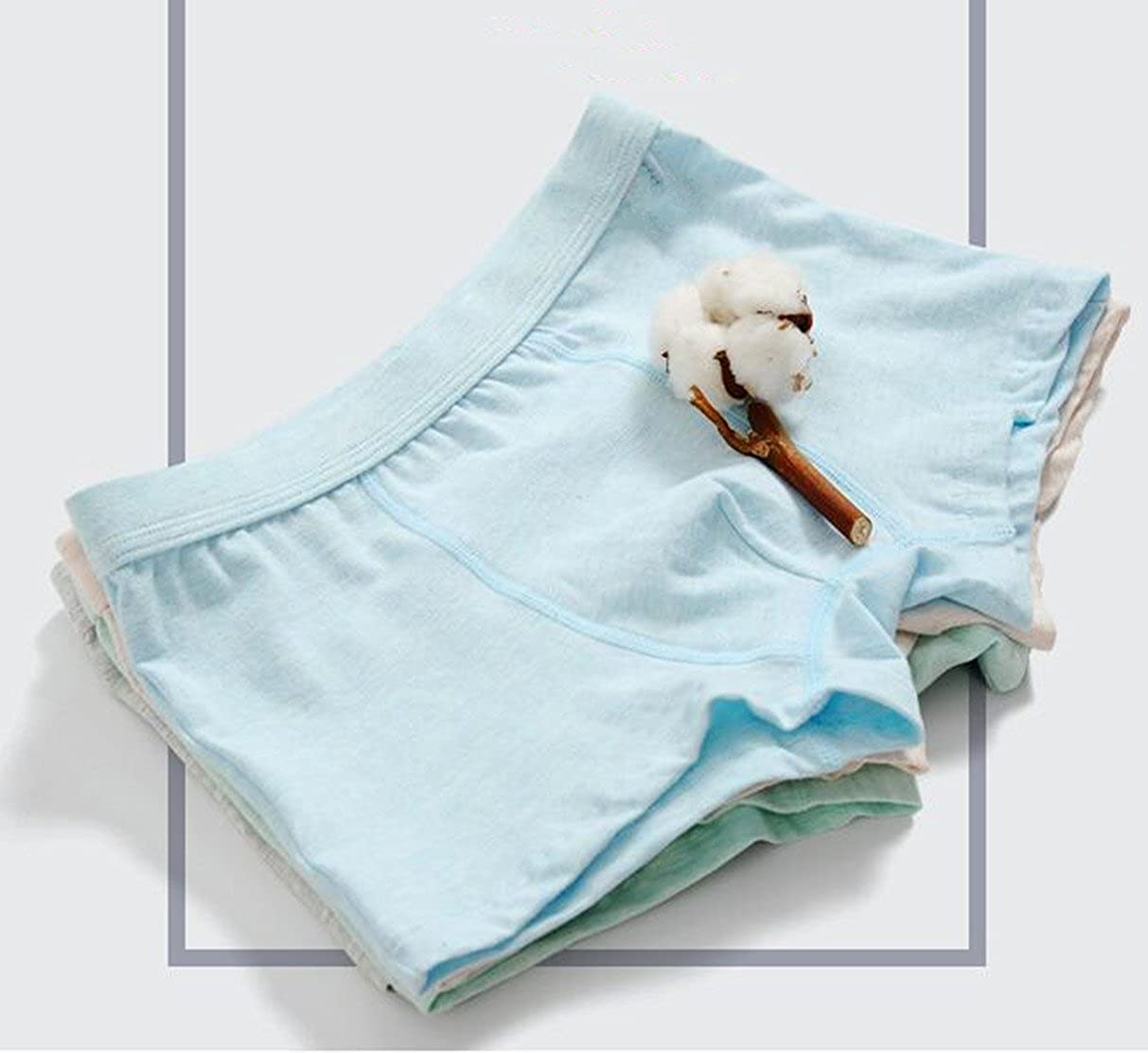zw99 Store Little//Big Boys Underwear Briefs Comfortable Cotton Panties 5-6 Years