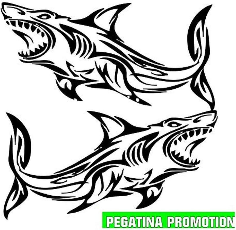 2 X Hai Fische Aufkleber Ca 30x30 Cm Aufkleber Für Boot Segler Jetksi Bootsname Boots Aufkleber Seewasserfest Boote Seglen Auto Bootsaufkleber Kennzeichen Boote Angler Wassersport Sticker Decal Sport Freizeit
