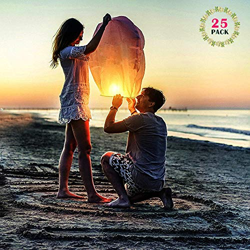 Sky Lanterns Chinese Lanterns 25 Pack Biodegradable Paper Large Flying Lanterns Romantic Night for Party Sea Beach Holiday Vacation/Memorial/Wedding/New Years/Festival Celebration (White) by DGSING