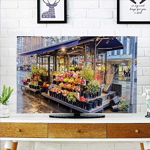(aolankaili Protect Your TV Florist Protect Your TV W30 x H50 INCH/TV 52
