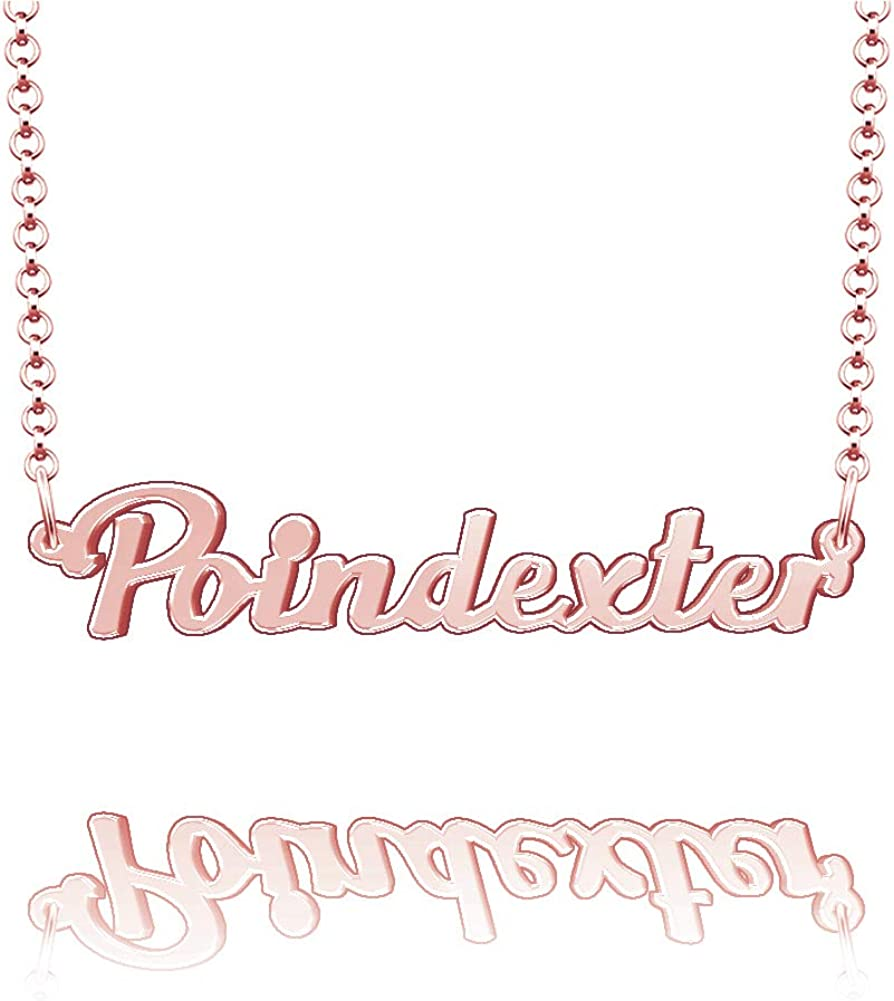 EV.YI Jewels Poindexter Custom Personalized Name Necklace Last Name Plate Pendant Gift for Family Mom Dad Friend Lover