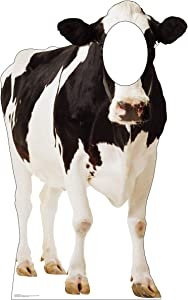 Advanced Graphics Cow Stand-in Life Size Cardboard Cutout Standup