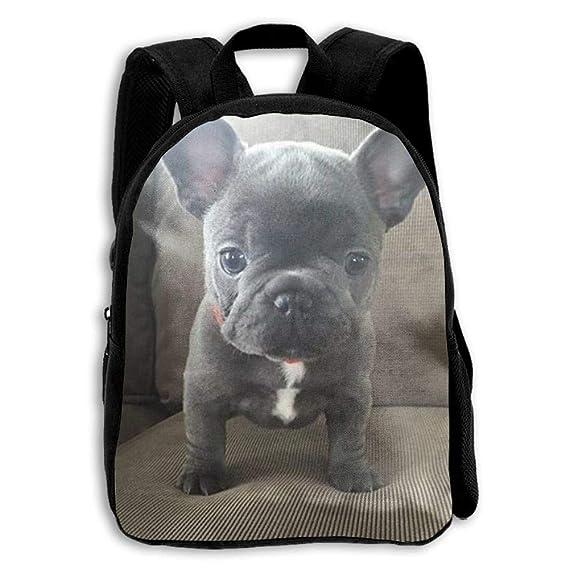 Preschool Backpack Little Kid Backpacks Boys Girls Chest Strap Incredible French Bulldog