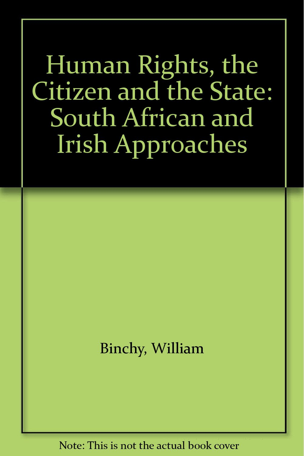 Read Online Human Rights, the Citizen and the State: South African and Irish Approaches PDF