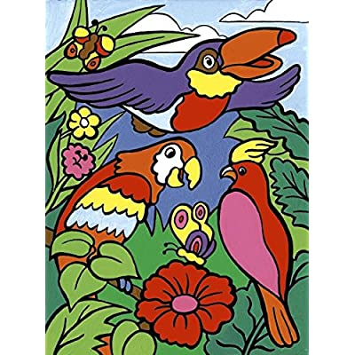 Royal Brush My First Paint by Number Kit, 8.75 by 11.375-Inch, Birds (MFP-7): Arts, Crafts & Sewing