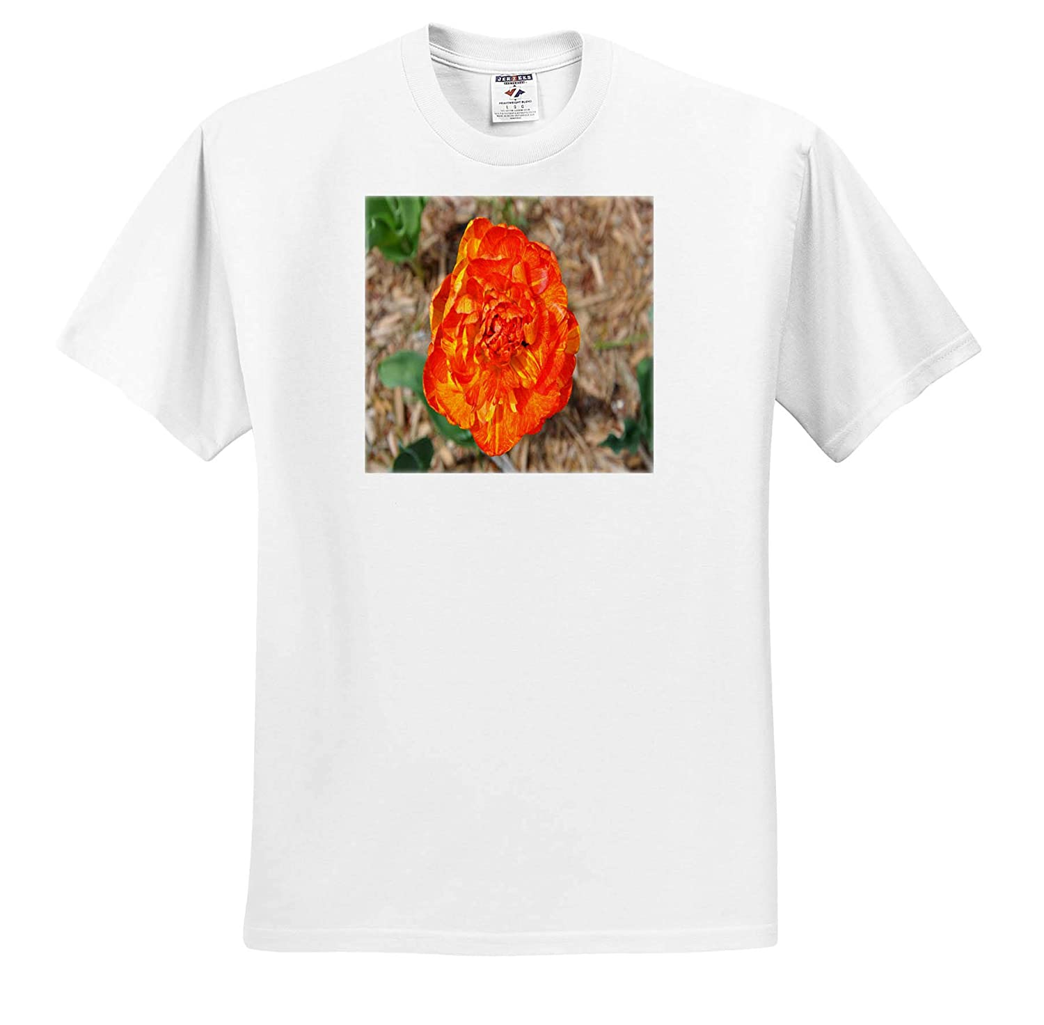 ts/_314269 Orange and Yellow Double Tulip 3dRose Dreamscapes by Leslie Adult T-Shirt XL Flowers