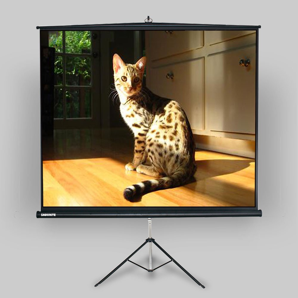 """SNOWHITE 70'' Tripod Projector Screen Luxurious   67.7 x 67.7"""" viewing area   1:1 format   Tripod stand & carrying handle   Quick & easy setup"""