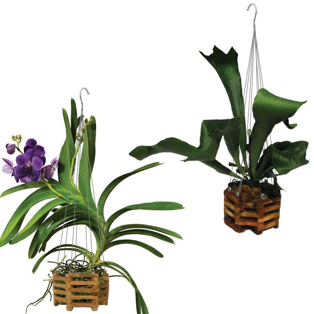 8 Natural Wooden Octagon Hanging Basket Outdoor Garden Planters 2-Pack