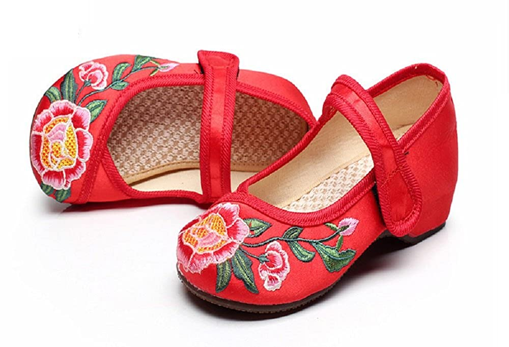 Tianrui Crown Girls Embroidery Flat Ballet Cloth Shoes Kids Mary-Jane Dance Shoe Sandal