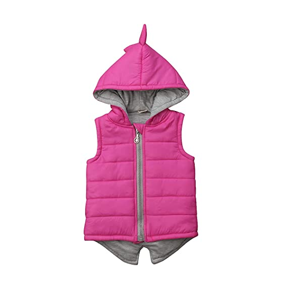 Pink, 3-4 Years DDSBABY Baby Girls Thermal Gilets Kids Cute Dinosaur Sleeveless Hooded Thick Gilet Vest Coats Outwear Clothing for Autumn Winter