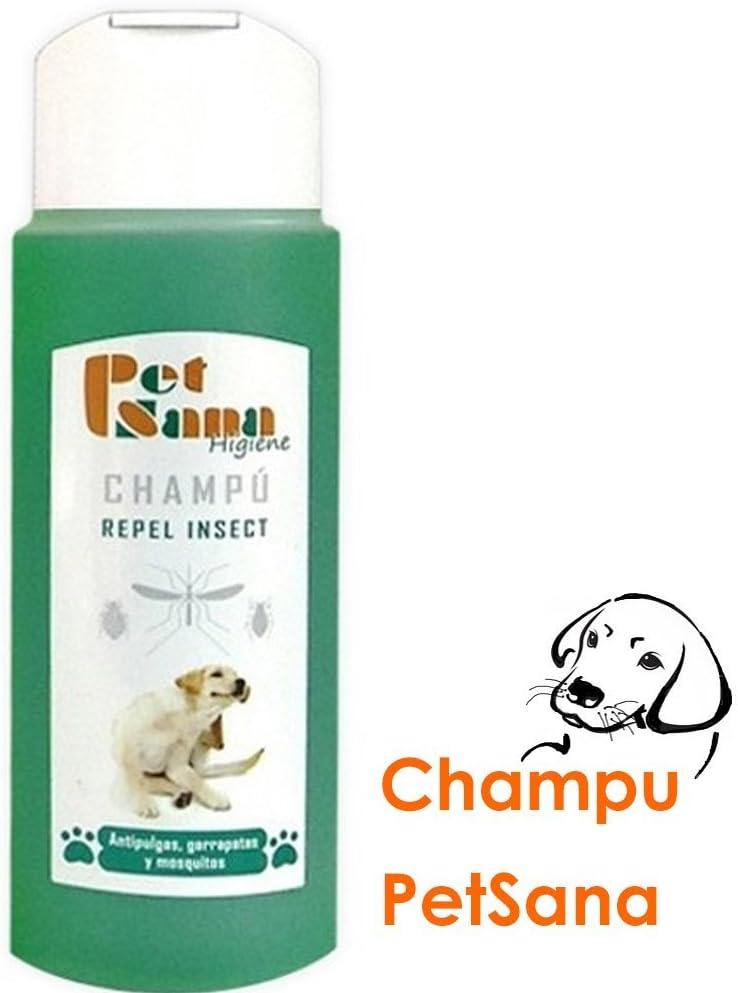 Champú repelente insectos para perros, antipulgas, garrapatas y mosquitos 250 ml: Amazon.es: Deportes y aire libre
