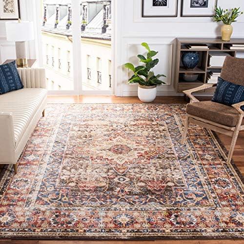 Safavieh Bijar Collection BIJ652D Traditional Oriental Distressed Non-Shedding Stain Resistant Living Room Bedroom Area Rug