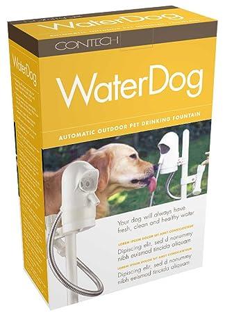 WaterDog Pet Fountain - automatische Hundetränke mit Sensor